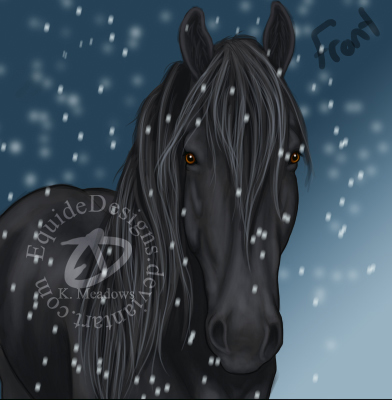 Christmas Card by EquideDesigns