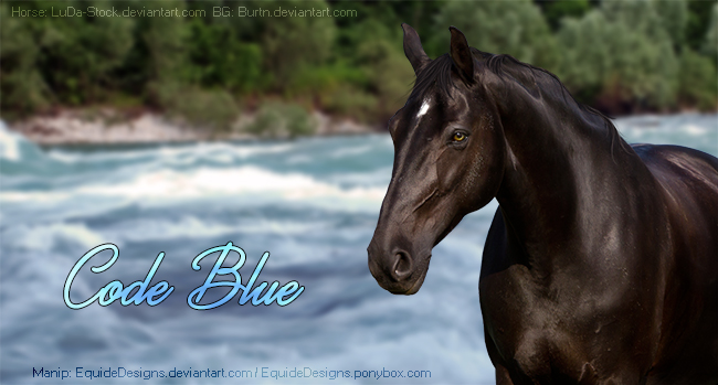 Code Blue by EquideDesigns