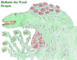 Wood Dragon - By Dinalfos5
