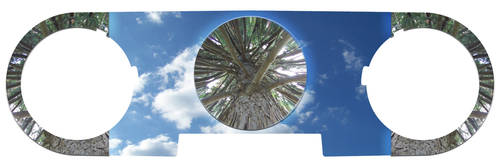 world tree_trik by digimagicnb