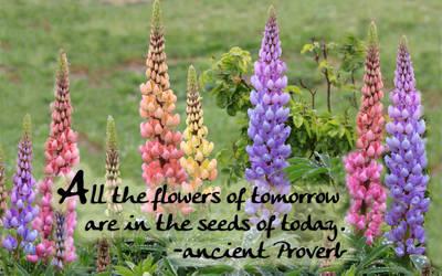 Spring Flowers of Tomorrow