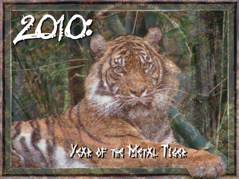 Year of Metal Tiger 2010