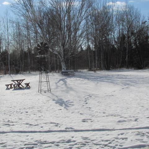 Snowfall 2 by A-Fox-Of-Fiction