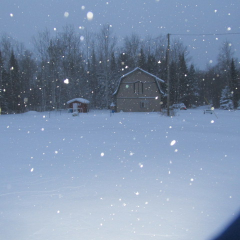 Dusk snowfall. by A-Fox-Of-Fiction