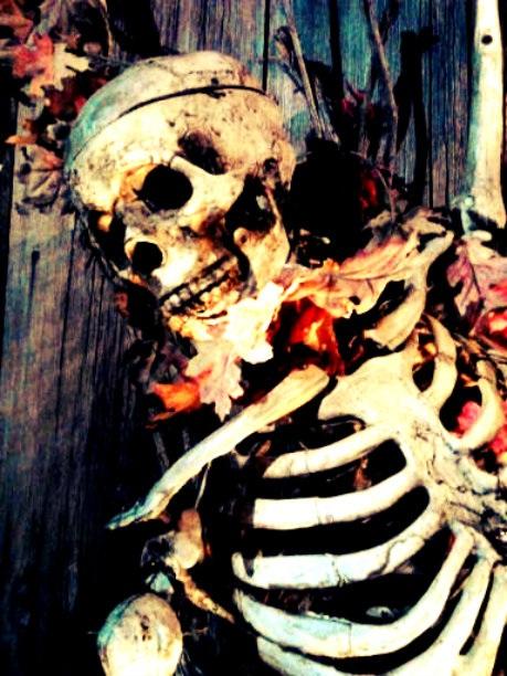 Skeleton Flowers Close-Up by TemariAtaje