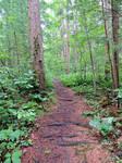 Appalacian Trail To Chimney Rocks 02