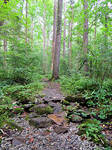 Appalacian Trail To Chimney Rocks 01