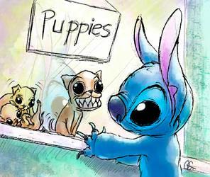 Puppy Sale