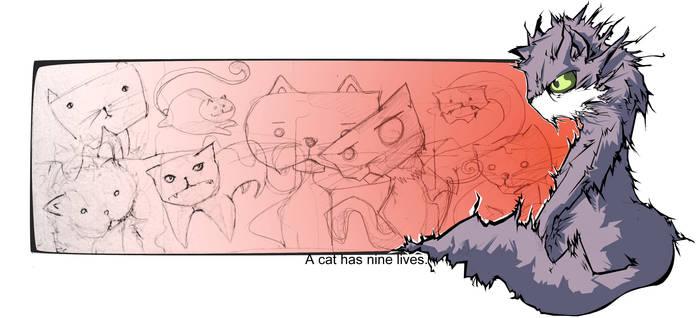 A cat has nine lives