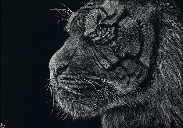 21st Century Tiger by Unmei-Wo-Hayamete