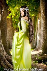 Arwen From Rivendell by MakaCrossWalker