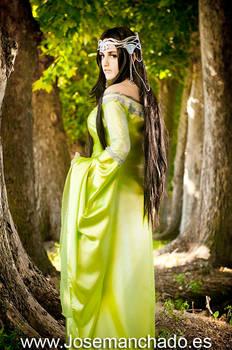 Arwen From Rivendell