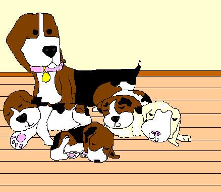 Dogs by balonowa56