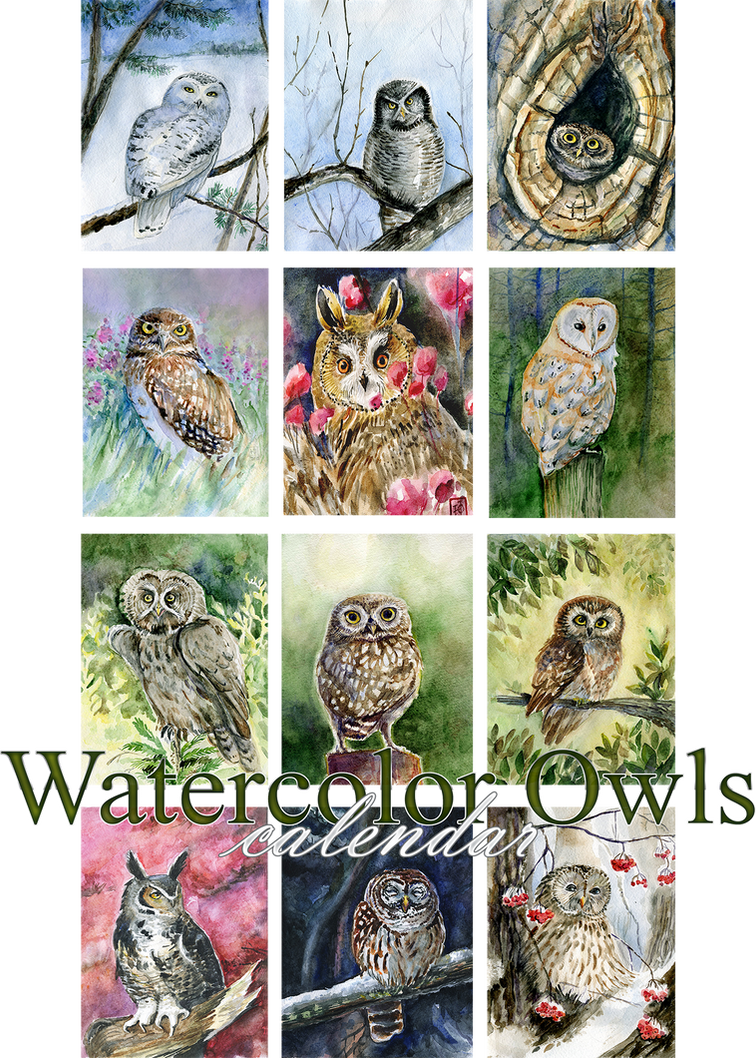 Watercolor owls calendar 2016
