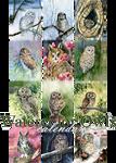 Watercolor owls calendar