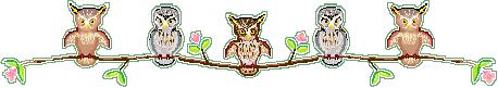 Owls Spring divider by Redilion