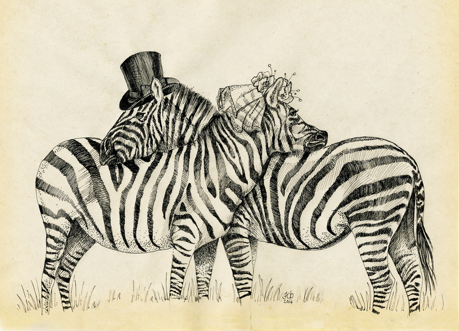 Fancy Zebras couple by Redilion
