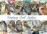 Fantasy Owl Zodiac