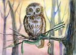 Sagittarius - Zodiac owl