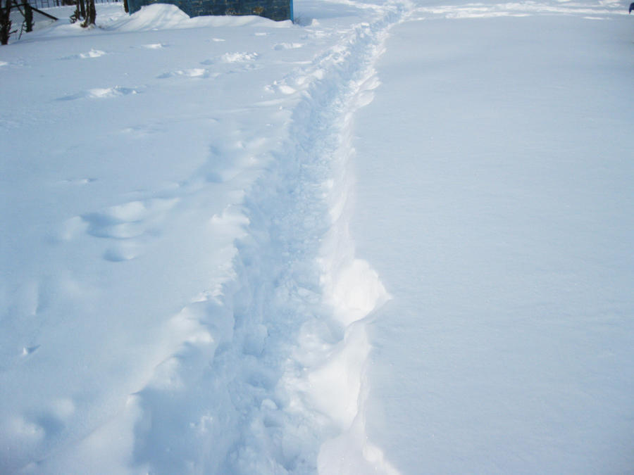 road path tracks snow - photo #15
