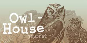 Owl house journal banner