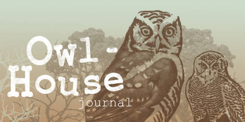 Owl house journal banner