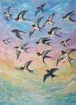 Migratory Birds 2 Swallows