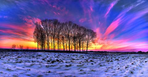 January Panorama