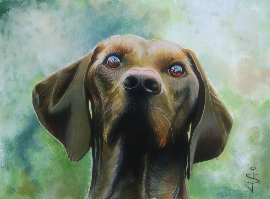 Acrylic - Brown Dog