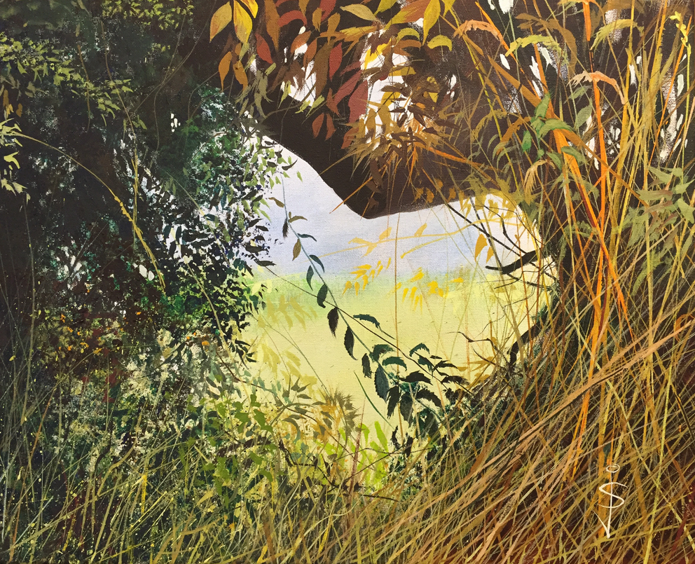 Hole in the Hedge by NorthumbrianArtist