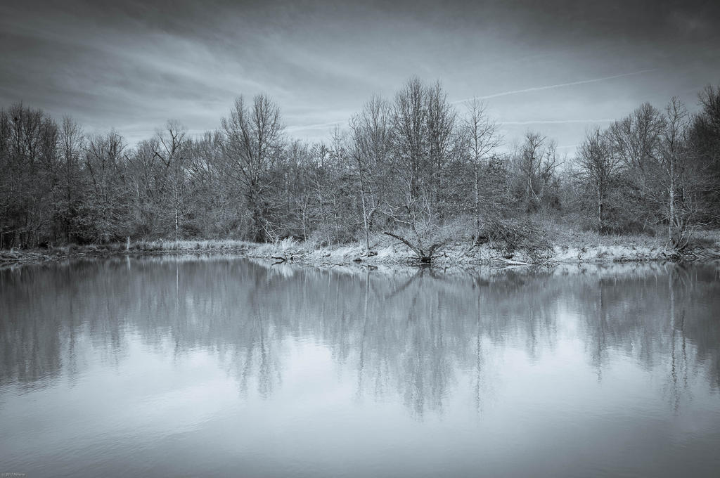 Nature peace by mdelong