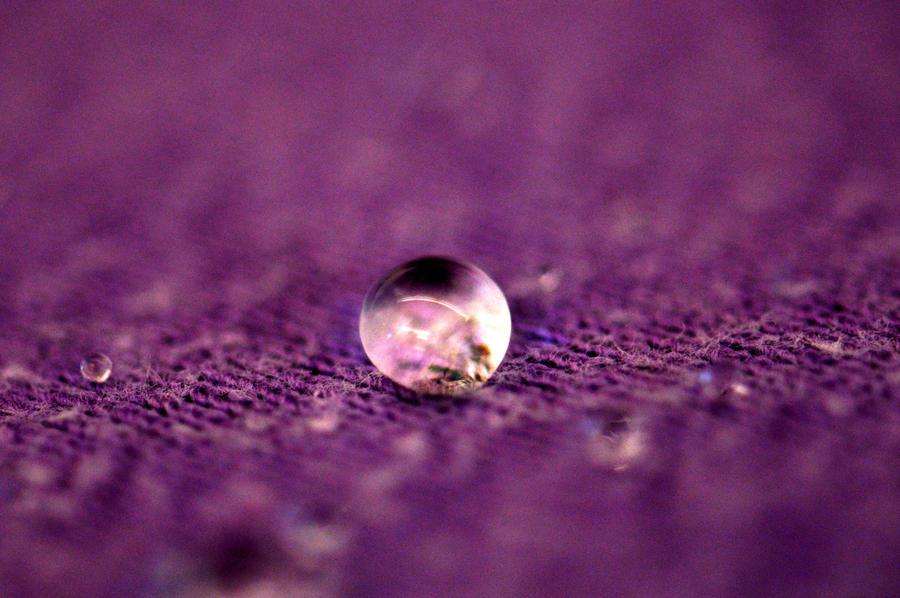 The Purple Hydrophobe by OrganizationZero