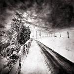 Cold melancholia 14