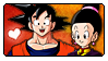 DB: Goku x Chichi by Reykholtz