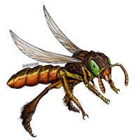 Jatai Stingless Bee