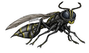 Polybia paulista Wasp
