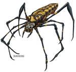 Nephila clavata Jorogumo Spider