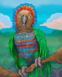Anaca Red fan Parrot 2