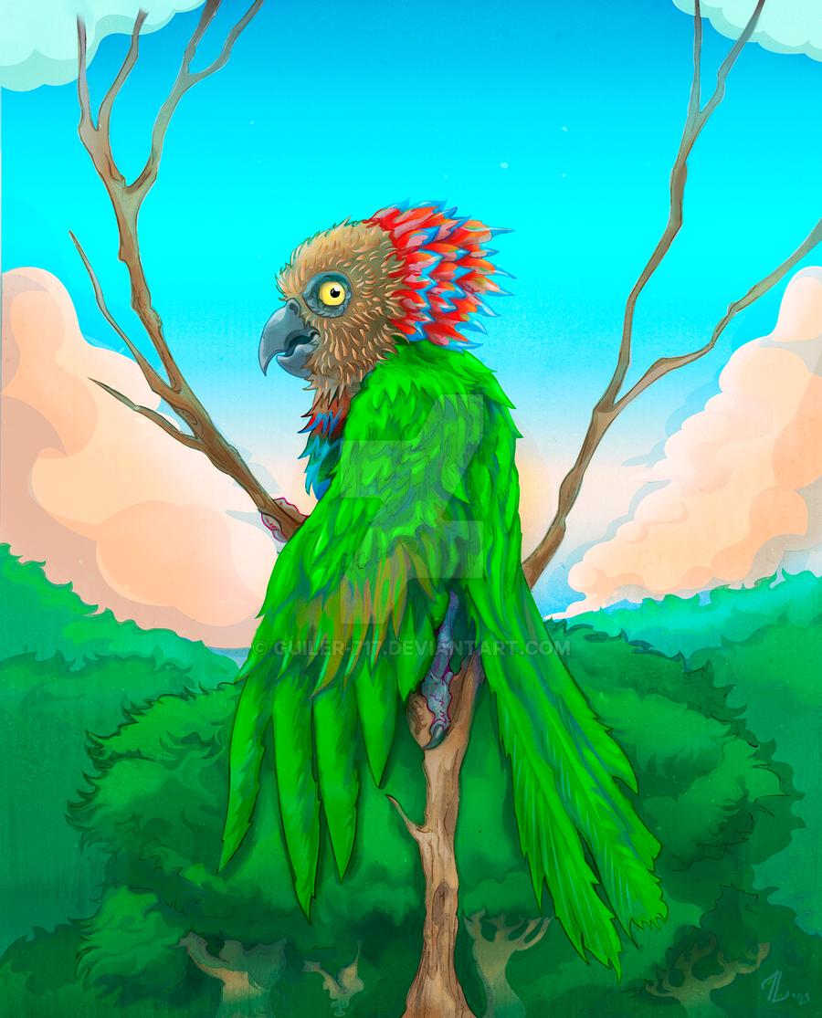 Anaca Red fan Parrot