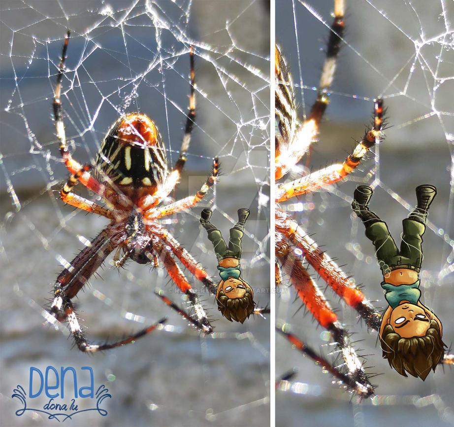 Spider by Reyko-Ryoko