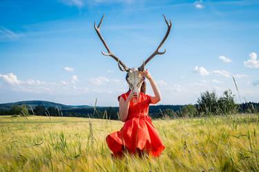 Deer ID