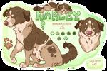 Harley Darling