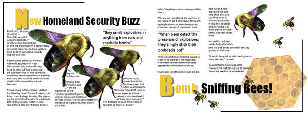 how to make bee bombs