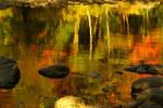 Monet autumnal II