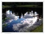 L.o.v.e. reflection
