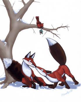 Fox Suprise