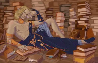 The Bookman's Shelf