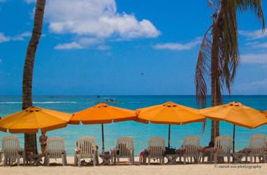Beach Umbrellas by narodski