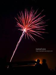 Fireworks 2 by narodski