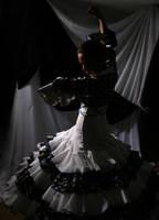 Flamenco 2 by eldarko